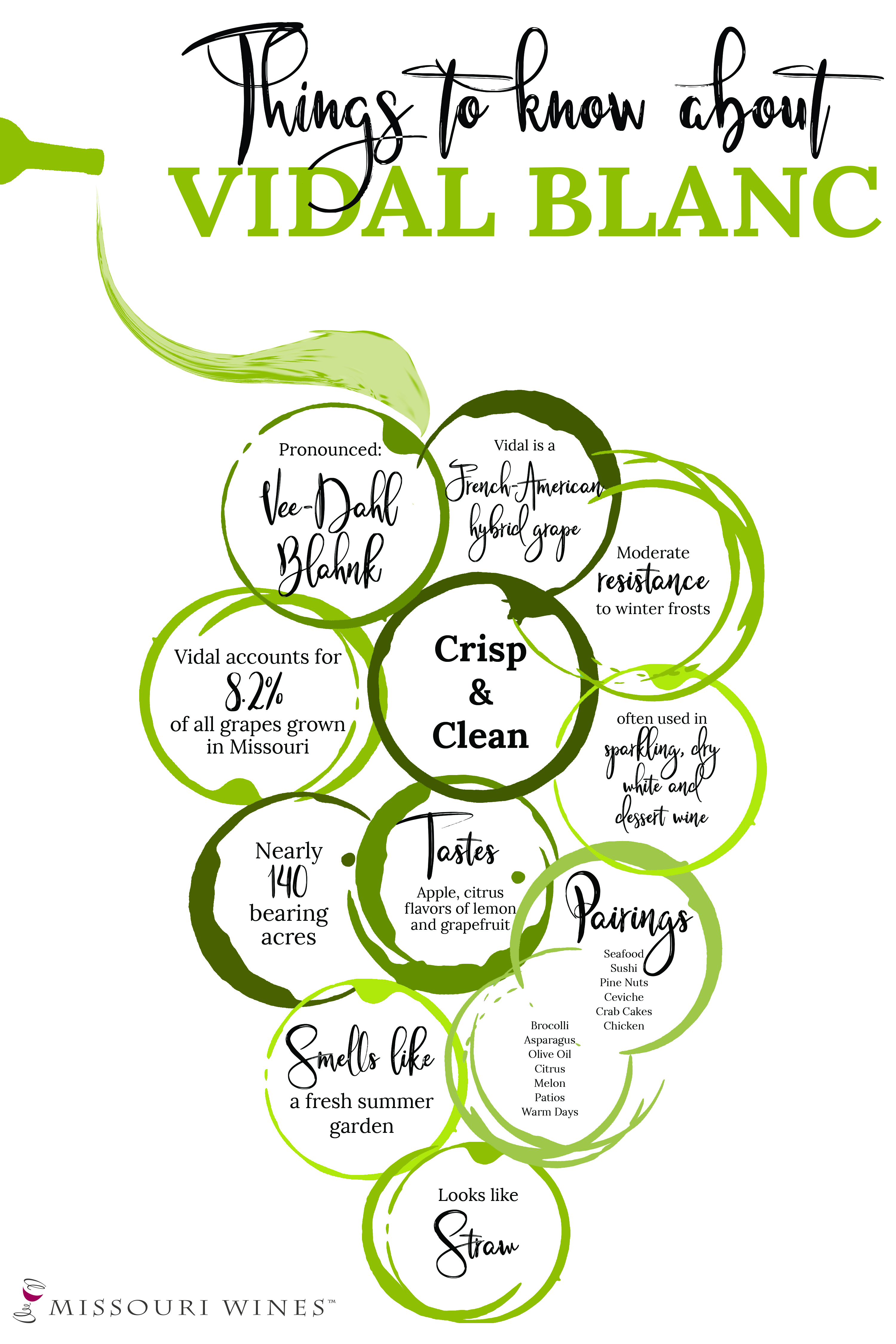 Infographic Page | MO Wine