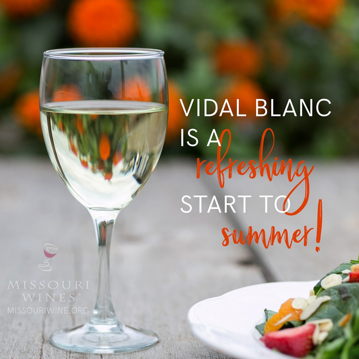 MO Vidal Blanc is a Refreshing Start to Summer