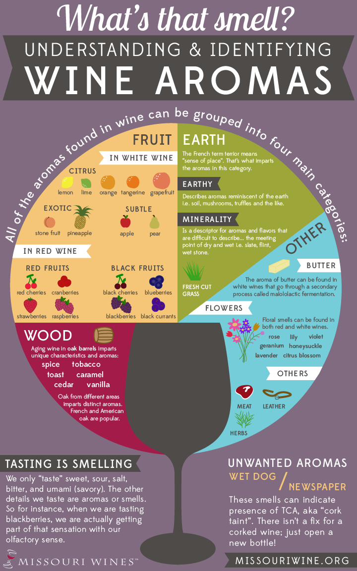 What's that smell? Understanding & Identifying Wine Aroma | MO Wine