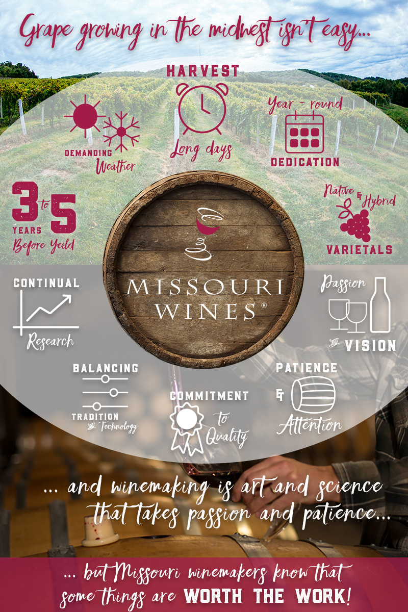 What makes Missouri wine worth the work?