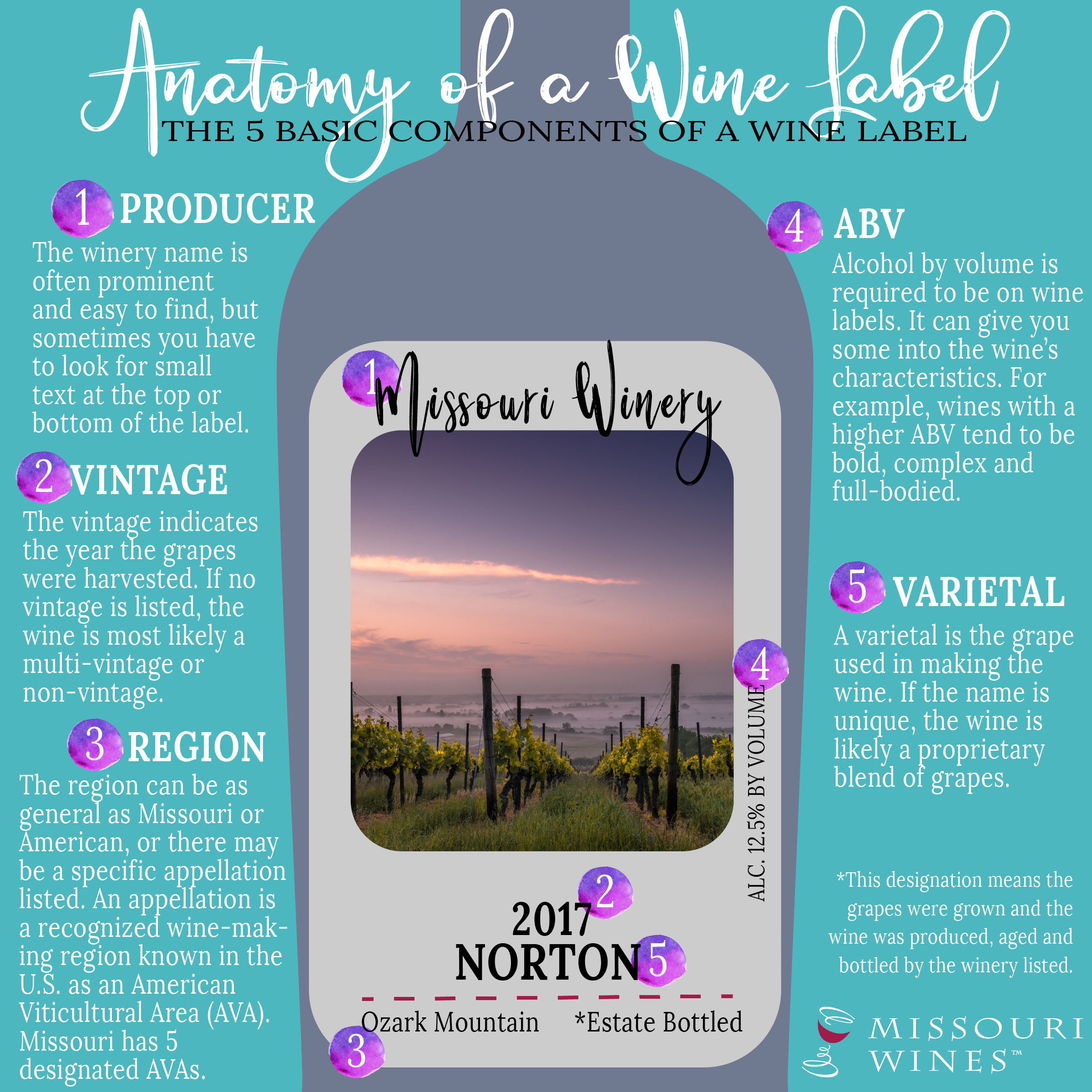 Anatomy of a Wine Label