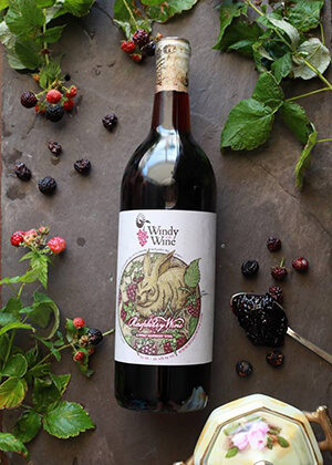 Windy Wine Company   MO Wine