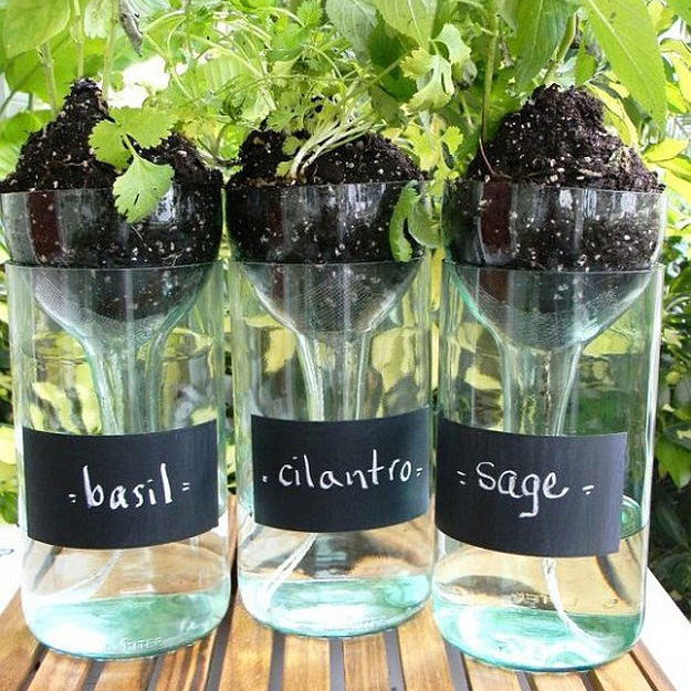 7 Ways to DIY in the Garden with Wine | Self Watering Planters
