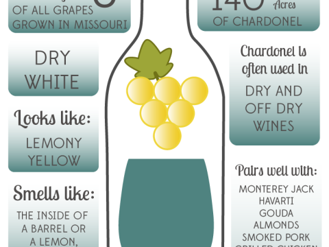 Chardonel Infographic