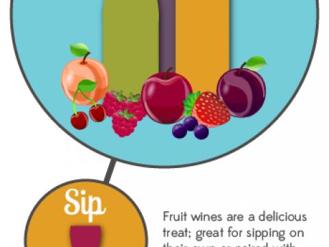 Fruit Wine Infographic