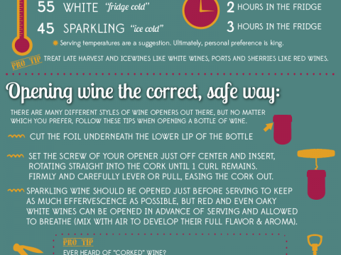 Serving Wine Survival Guide