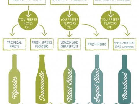White Wine Infographic
