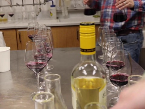 Embedded thumbnail for Wintertime Wine Blending at St. James Winery