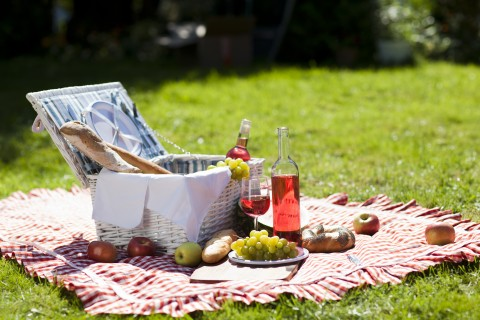 Picnic basket and wine sitting on a blanket in the grass