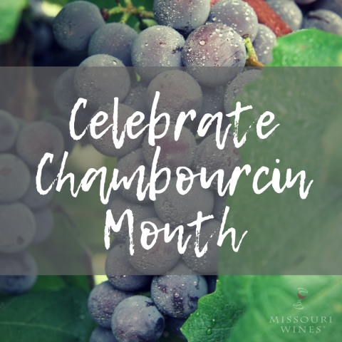 November is Chambourcin Month