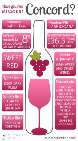 Concord Infographic
