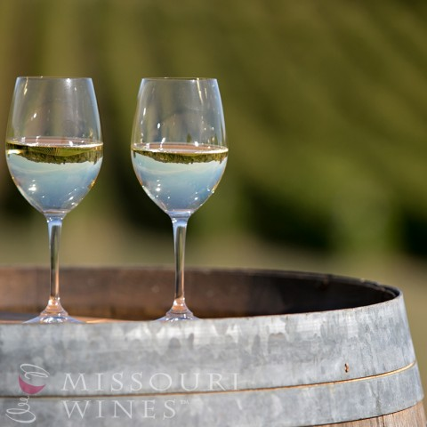 Discover New MO Wineries