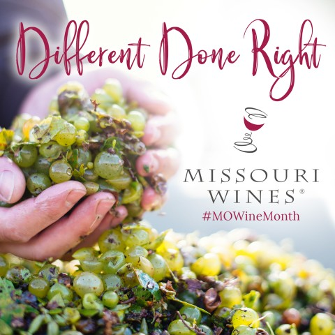 Different Done Right ecard with Missouri Wines logo and hashtag MO Wine Month