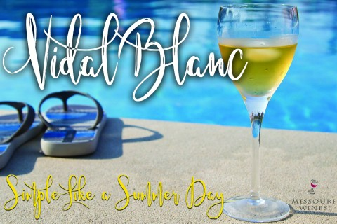 Glass of Vidal Blanc poolside next to sandals