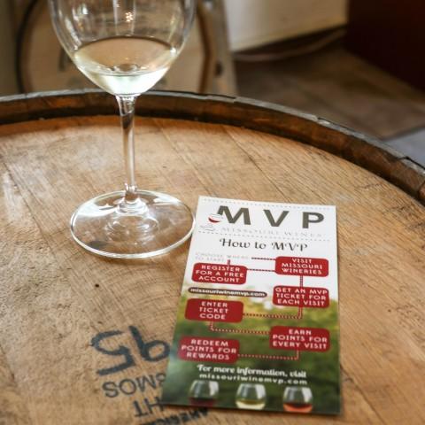 MVP Brochure and Glass