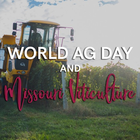 World Ag Day and Missouri Viticulture
