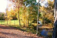 Apple Creek 1