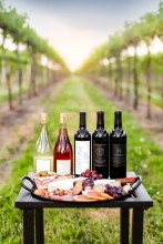 Spencer Manor Wines