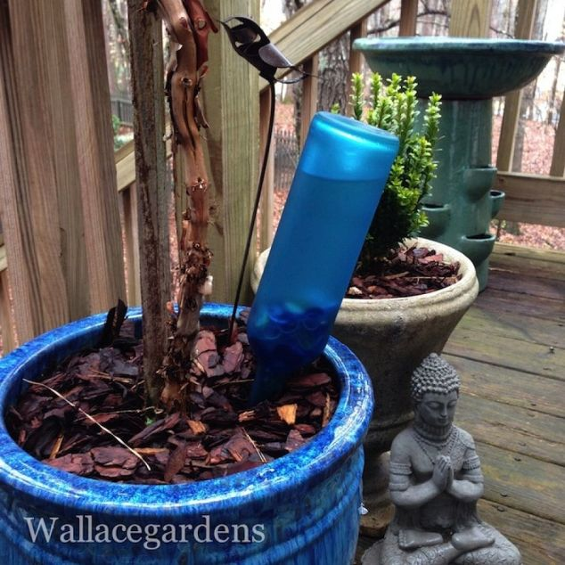 7 Ways to DIY in the Garden with Wine | Watering Device